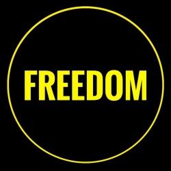 Тариф «Большая переговорная до 10 чел.» - Freedom|Мост Поцелуев