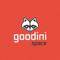 Коворкинг Goodini.Space